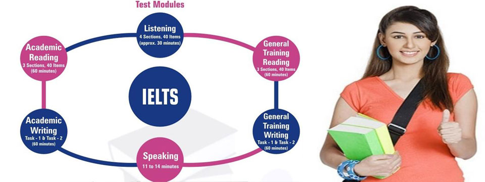 ielts essay education system