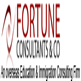 FORTUNE CONSULTANTS & CO